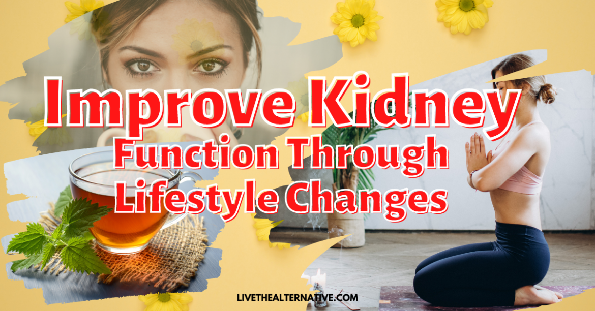 How To Improve Kidney Function Through Lifestyle Changes